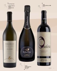 170531 I Grandi Vini bottiglia (002)